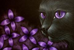 Violet Scent!