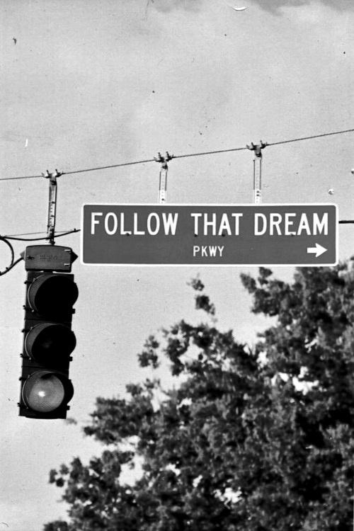 follow_that_dream