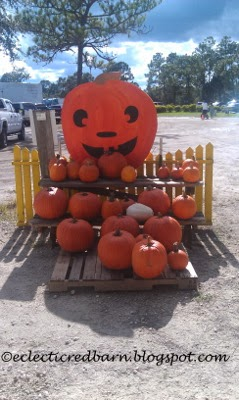 Eclectic Red Barn: Pumpkins at the Long and Scott Farm