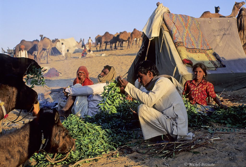Rencontres au bout du monde rajasthan
