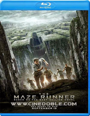 The Maze Runner (2014) 720p Latino