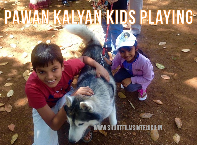 pawan kalyan kids aadya akira pics with dog