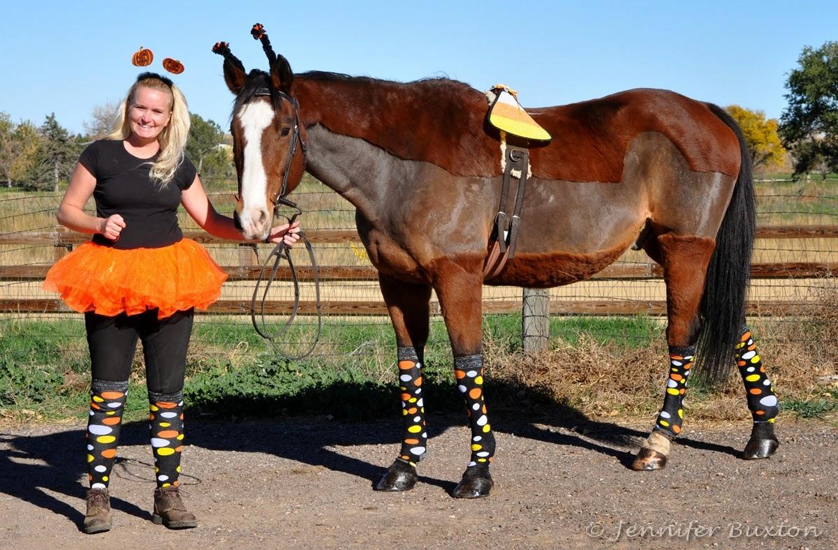 Braymere Custom Saddlery: Halloween horses