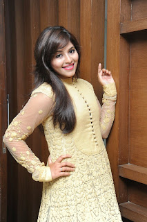 Actress Anjali Latest Pictures in Long Dress=at Geethanjali Success meet  7)