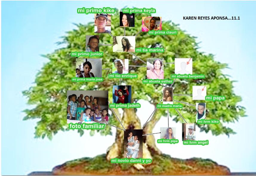 Imagenes de arboles geonologicos imagui for Nombres de arboles en ingles