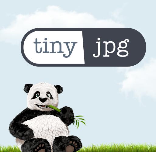 موقع Tinyjpg.com  يقلل حجم الصور بجودة