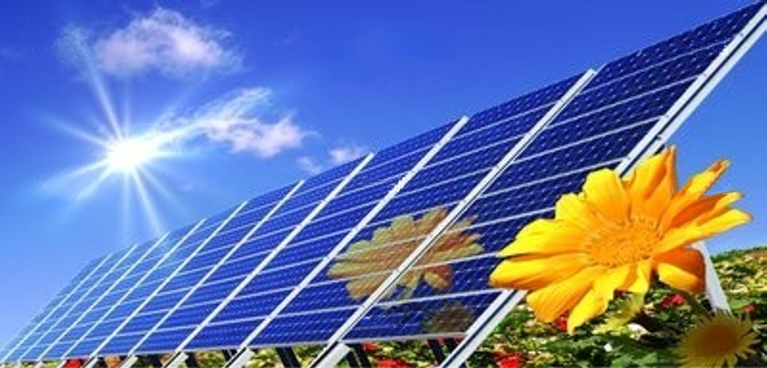desnnudos: Solar energy suppliers