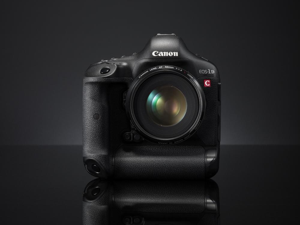 Michael Daniel Ho - The Wildlife Ho-tographer: Canon EOS-1D X & EOS ...