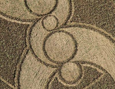 dibujo en los campos de cosecha