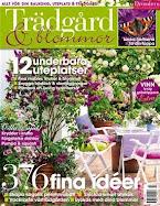 Vårt uterum finns med i Trädgård & Blommor!!!