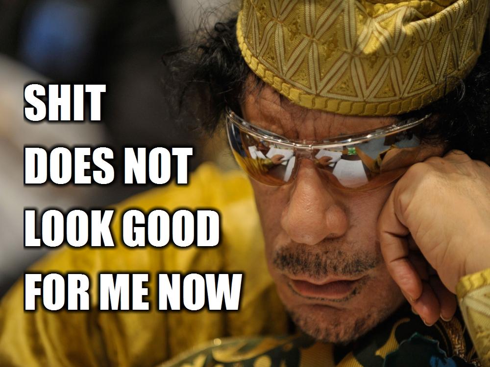 bin laden and gaddafi. osama in laden and gaddafi.