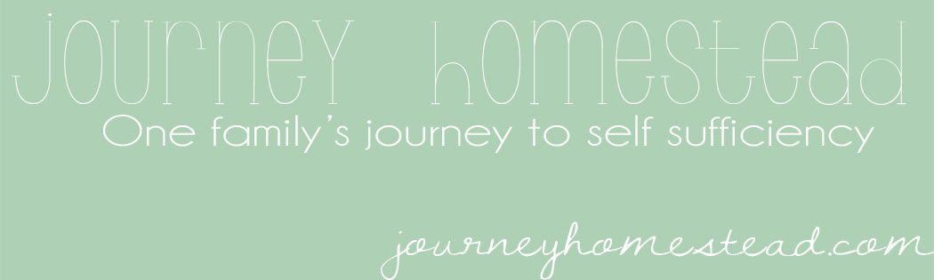 Our Journey Homestead