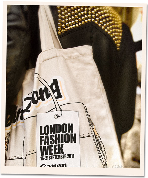 Psynopsis LFW SS12 Bag
