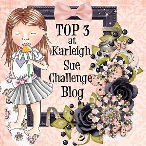 Karleigh sue challenge