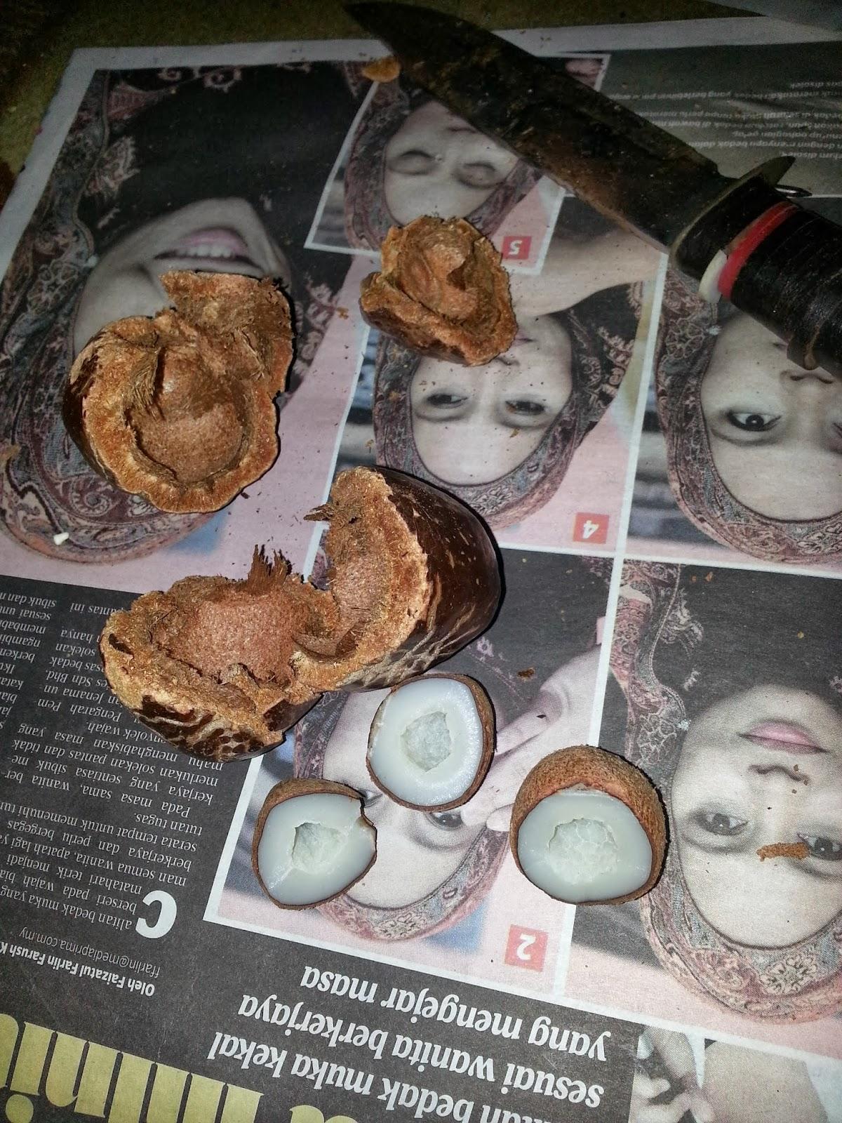 http://rinazainal6032.blogspot.com