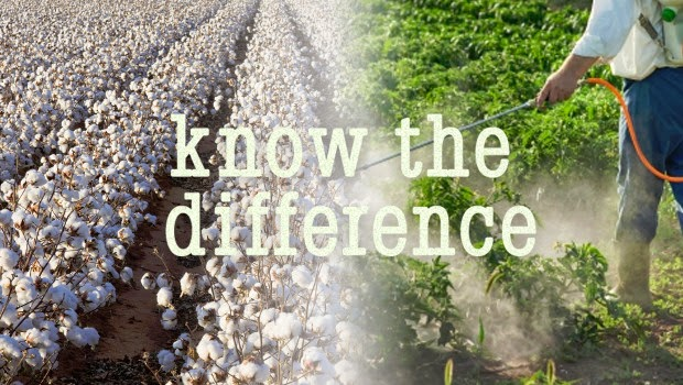 Non-organic cotton is one of the most genetically engineered, pesticide- and chemically-contaminated crops in the world