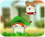 Chuột chũi đào tẩu, game vui