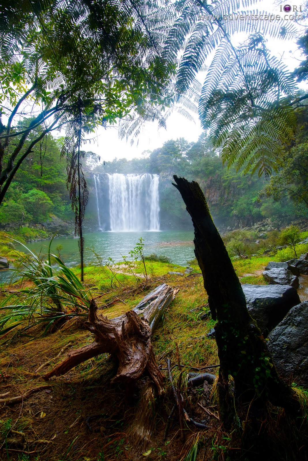 Philip Avellana, iori, Australian Landscape Photographer, adventscape, New Zealand, falls, waterfalls, nature photos, Kerikeri, North Island, tour, travel, pool bed, trunch, Rainbow Falls