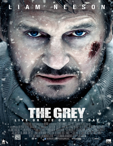 Ver Infierno blanco (The Grey) (2012) Online