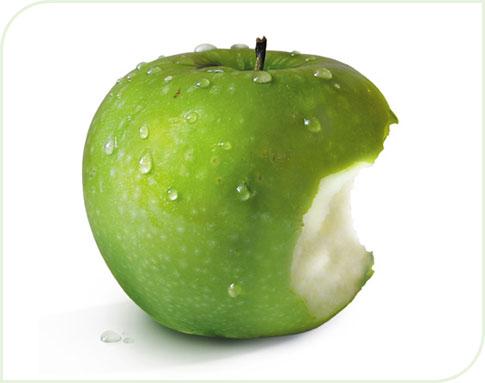 chroniques de bretagne manger des pommes. Black Bedroom Furniture Sets. Home Design Ideas