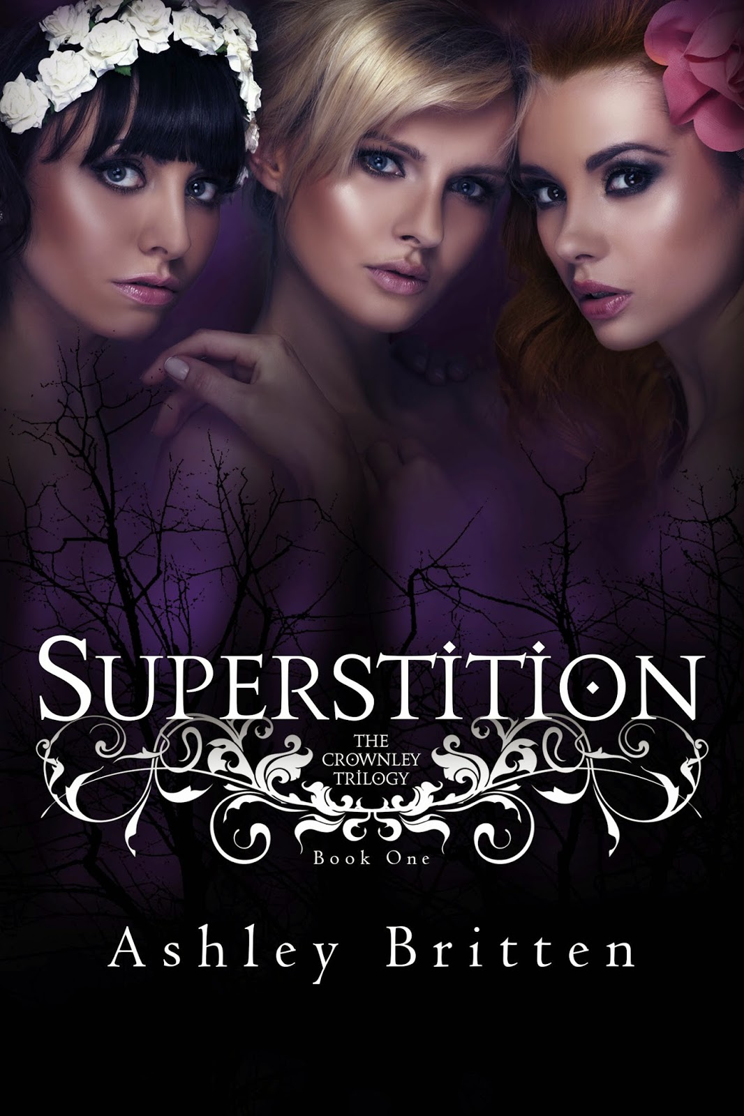 https://www.goodreads.com/book/show/21793634-superstition