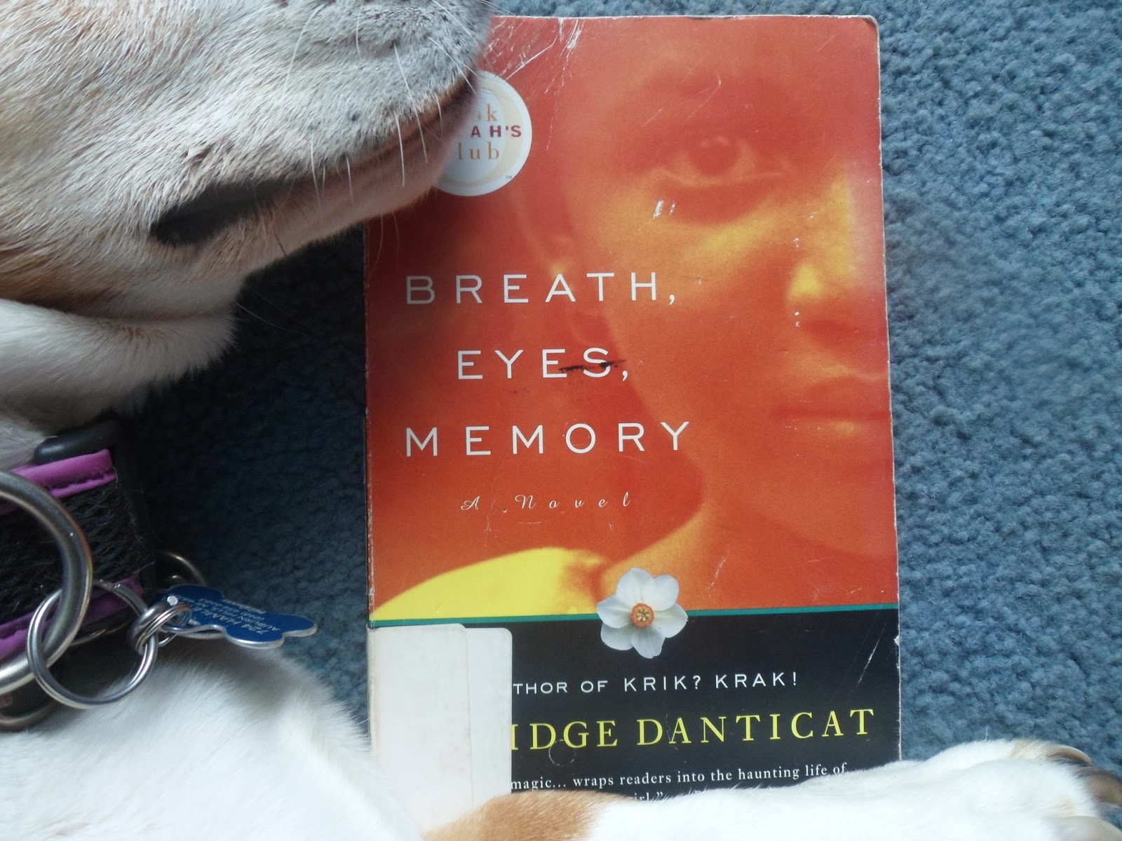 eyes breath and memory Use our free chapter-by-chapter summary and analysis of breath, eyes, memory it helps middle and high school students understand edwidge danticat's literary masterpiece.