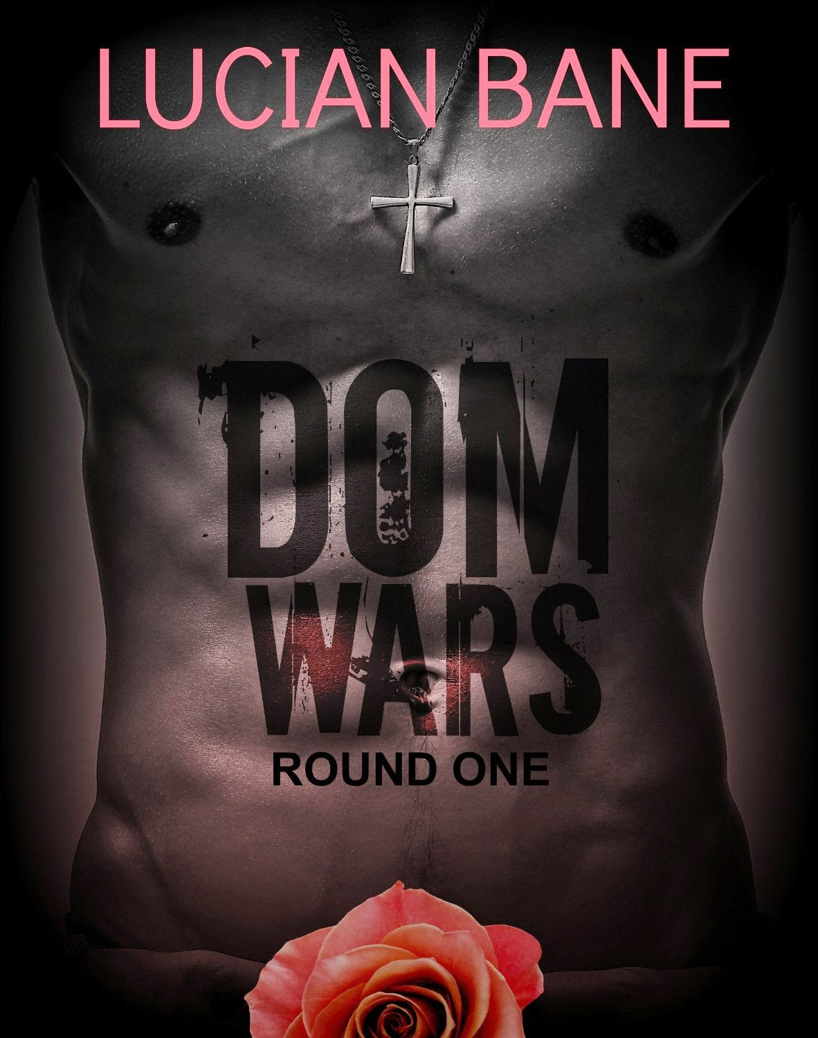 This Is Definitely Different Than Other Bdsm Books That I Have Read And  Lucian Bane Isn't Anything Like The Previous Doms I've Read About Either