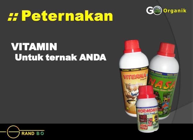 produk produk perikanan nasa