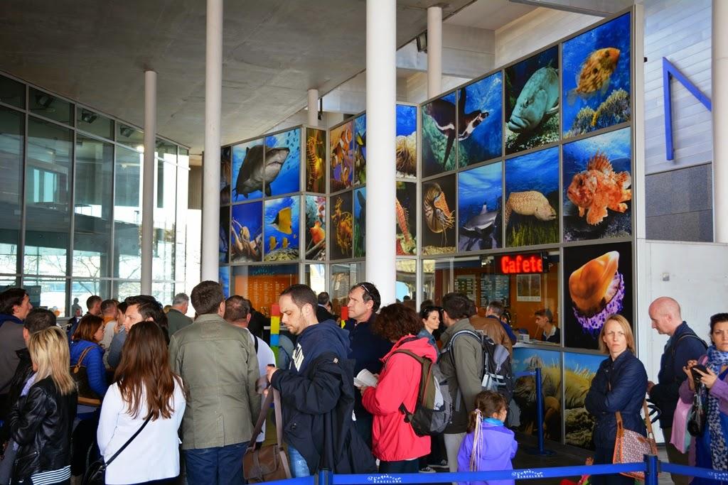 Barcelona Aquarium crowds