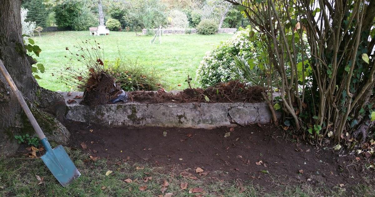 Derri re les murs de notre jardin plantation de bulbes for Derriere les murs de mon jardin