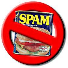 apa itu spam, spam,