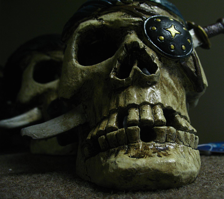 http://2.bp.blogspot.com/-0kvrAIZfjSs/UZDeEJvfwQI/AAAAAAAAPsg/RuL_5C2vUnA/s1600/skullls-hd-skull-3648x2736.jpg