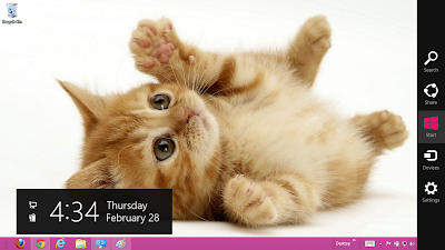 Cute Cats Theme For Windows 7