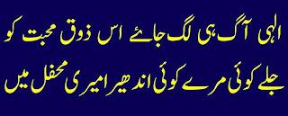 2 Lines Urdu Poetry about love feelings