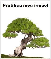 PARA SUA REFLEXÃO, VISITE-NOS.