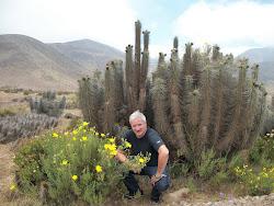 Un Jardín Natural en medio del Desierto-Chile