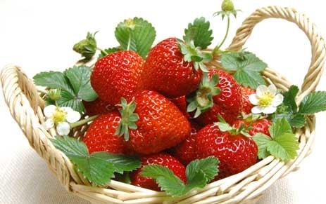 manfaat buah starwberry bagi kesehatan