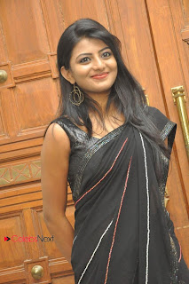 Haasika Picture Gallery in Black Saree at Prema Katha Chitram Audio Release Function  0011.jpg