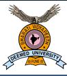 Bharathi Vidyapeeth Deemed University Logo