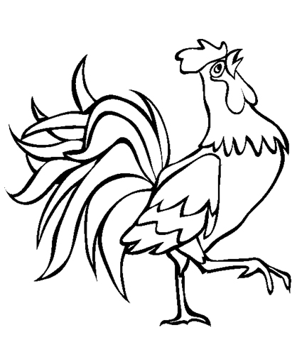 rooster coloring pages - Rooster Coloring Page