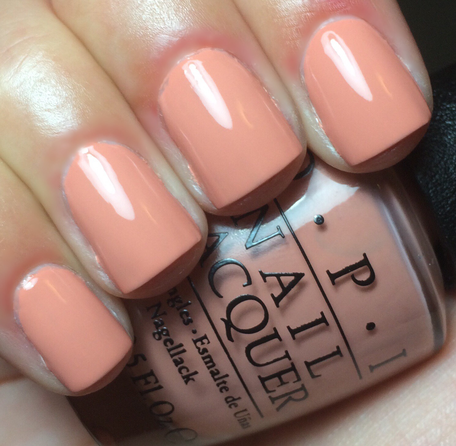 Venice Collection Swatches (Fall 2015) | Swatches by an OPI Addict