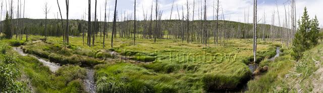 12 photo panorama - Valley near Beaver Lake, Yellowstone National Park
