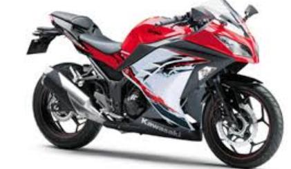 Kawasaki Ninja 150 Rr Se (Special Edition)