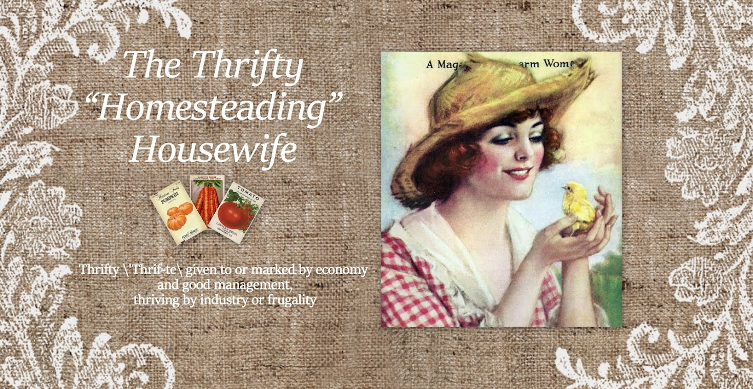 The Thrifty Housewife
