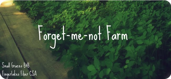 Forget-me-not Farm
