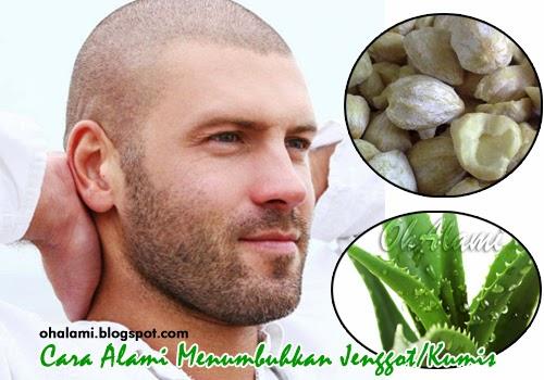 Ramuan Obat Herbal (Bahan Alami) Untuk Menumbuhkan Jenggot Dan Kumis