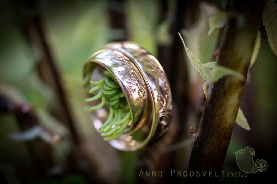 sõrmused-pulmafotod