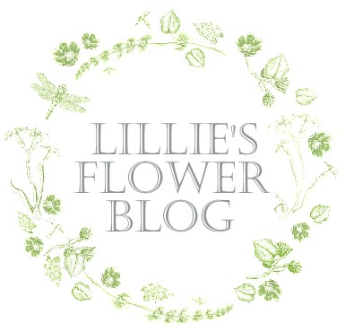 LILLIE'S FLOWER JOURNAL