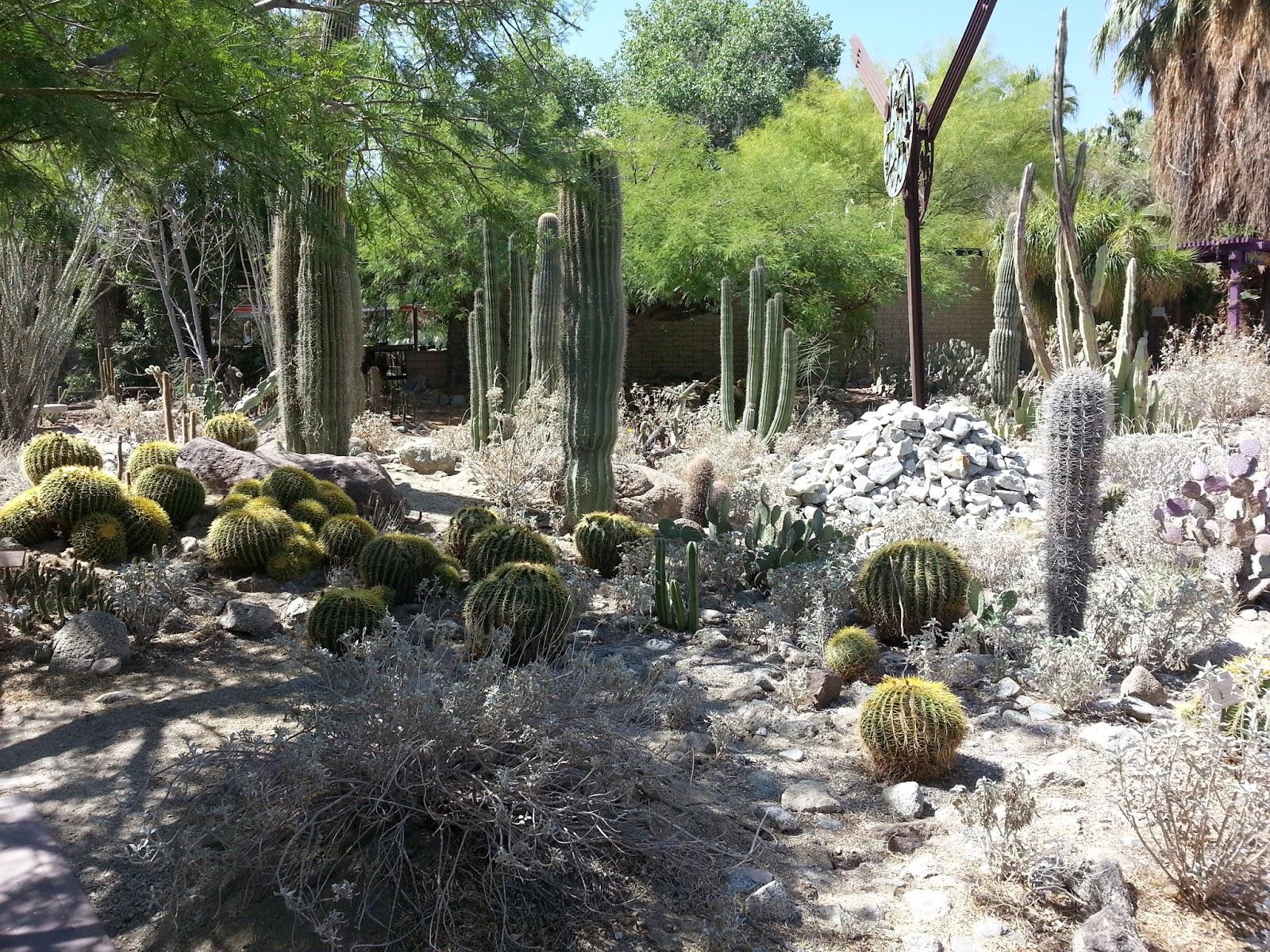 Jet Set Mom The Living Desert Zoo Botanical Garden