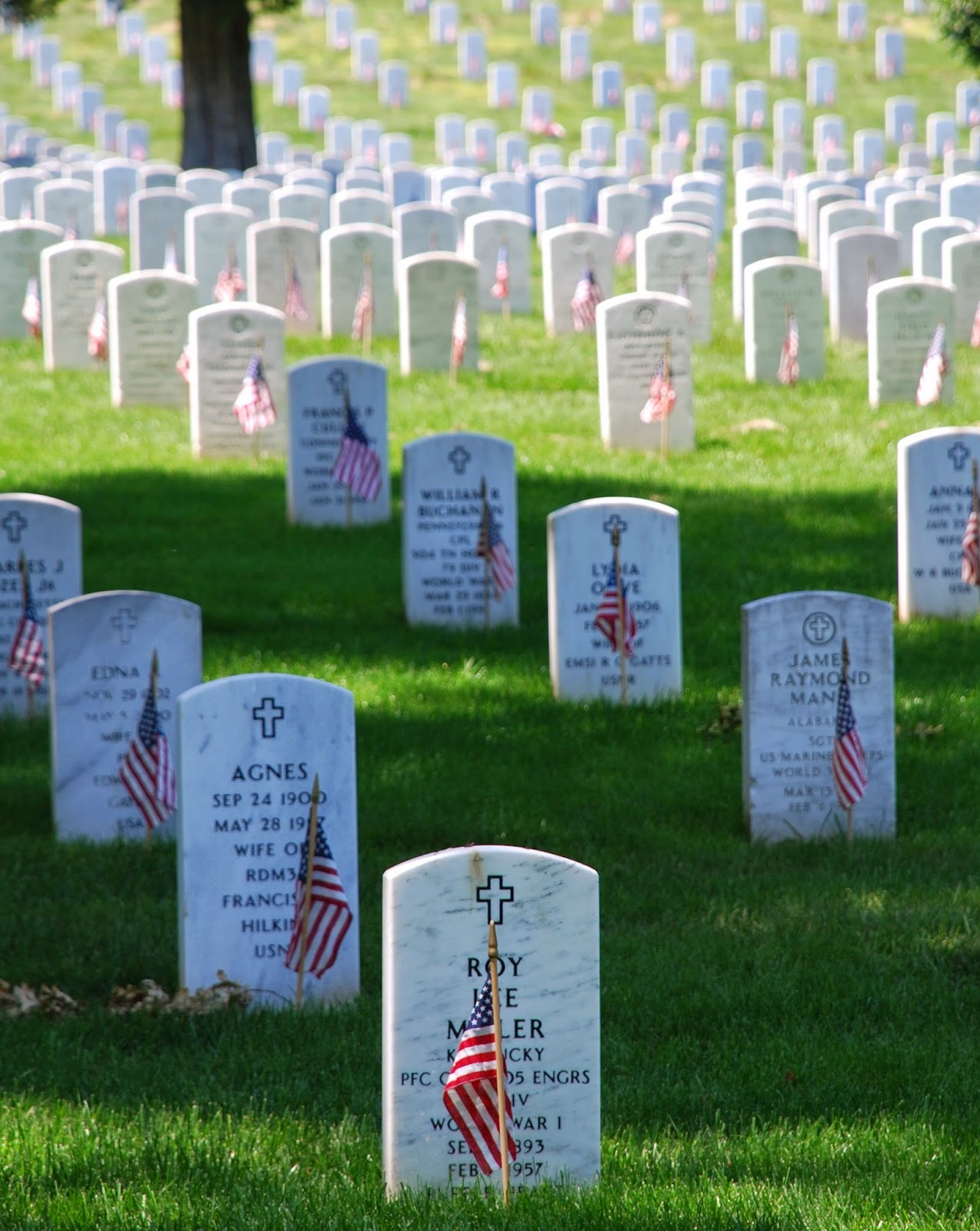 Memorial Day Soldier Cemetery Photo
